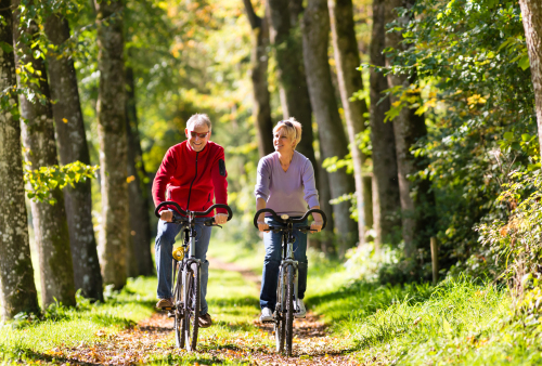 Best Retirement Investments for a Steady Stream of Income